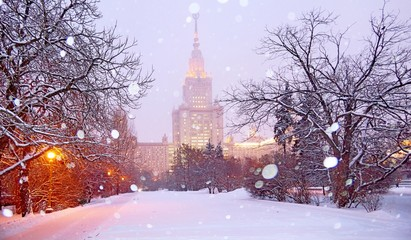 Romantic view of snowfall in white winter campus of famous Russian university with snowed evergreen...