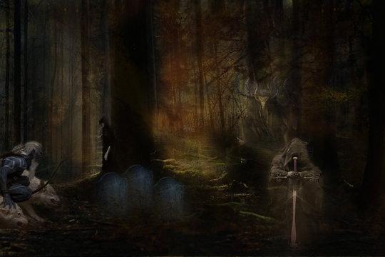 forest - balck shadow
