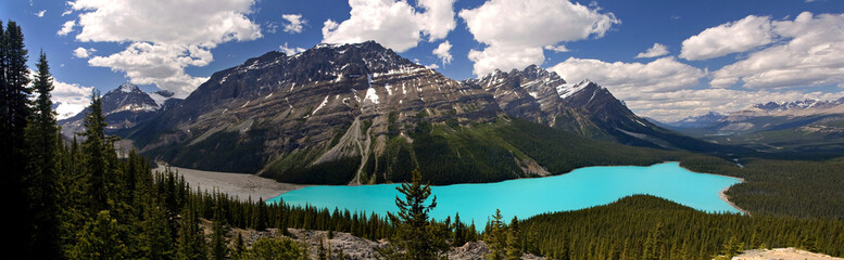 Peyto Lake Panorama in Summer