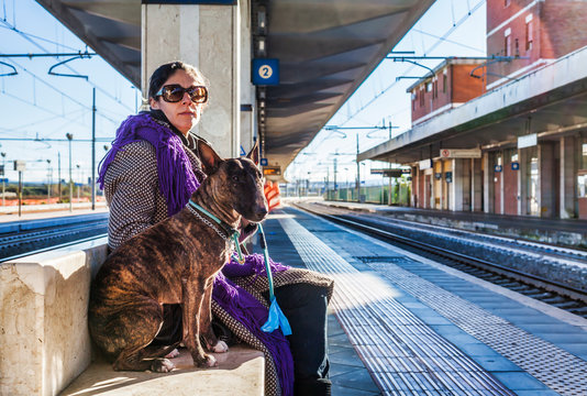 Girl and bull terrier at the train station