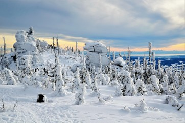winter landscapes of the bavarian Forest