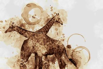 Giraffe. Digital Art Coffee stain panting.