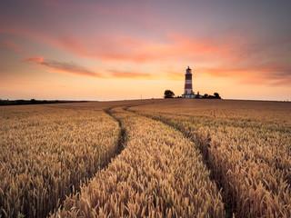Lighthouse Curves