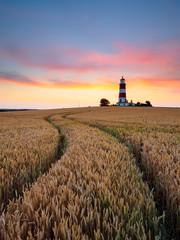 Lighthouse Curves Portrait
