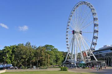 Spoed Fotobehang Oceanië Wheel of Brisbane Ferris wheel