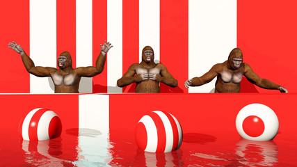 Drei Gorillas auf einem Podium