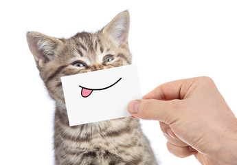 Papier Peint - cat with funny tongue smile isolated on white