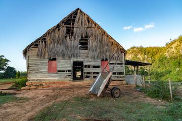 Tobaco house