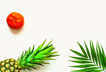 Tropical background with pineapple. Tangerine and palm leaves on isolated white background.