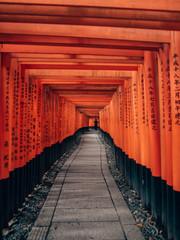 Poster de jardin Kyoto Fushimi Inari Taisha - many torii in Kyoto, Japan