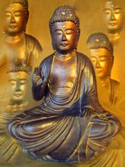 Buddhastatue mit Buddhareflexionen im Hintergrund, braun und gold, 2019