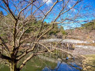 【静岡県伊豆市】冬の日本庭園風景【修善寺虹の郷】
