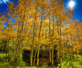 Cabin in the Aspens