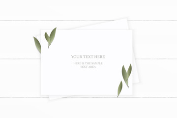 Flat lay top view elegant white composition paper nature leaf on wooden background