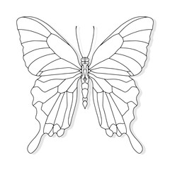 Hand drawn butterfly for t-shirt design or tattoo. Coloring book for kids and adults.
