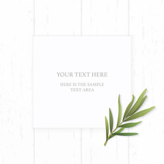 Flat lay top view elegant white composition paper tarragon leaf on wooden background