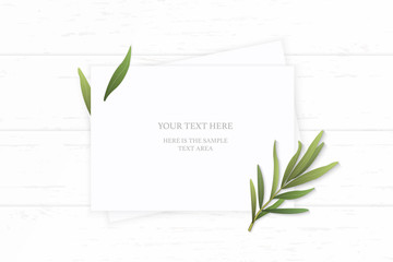 Flat lay top view elegant white composition paper nature tarragon leaf on wooden background