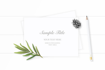 Flat lay top view elegant white composition paper pine cone pencil and tarragon leaf on wooden background
