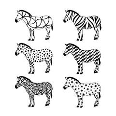 Set of zebras. Variety pattern design.  Wild animal texture. Vector illustration isolated on white background.