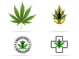 Logo marijuana plant and cannabis oil drop vector.