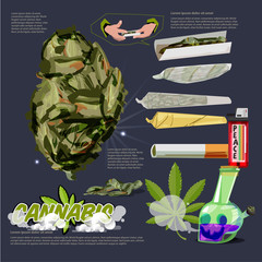 Cannabis or Marijuana Buds raw joint. bong infographic with logotype - vector