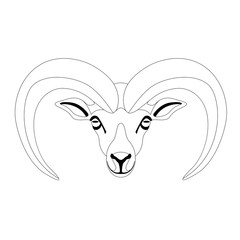 ram face ,vector illustration ,front view , lining