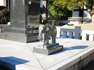 覚王山日泰寺にある象の像