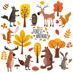 Set of cute forest animals bear, raccoon, squirrel, hare, fox, wolf, hedgehog, moose, deer, autumn leaves trees, trend modern style, vector, illustration, isolated