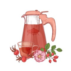 Elegant drawing of glass transparent pitcher with strainer, cup of tea, dog rose branch with flowers and leaves isolated on white background. Tasty beverage. Vector illustration in antique style.