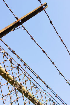 Barbed wire fence with blue sky background