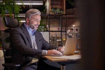 Mature businessman working in modern office, using laptop