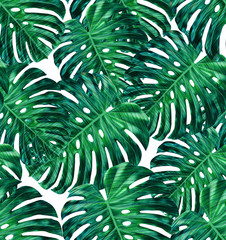 Tropical leaf design featuring green monstera plant leaves on a white background. Seamless vector repeating pattern.