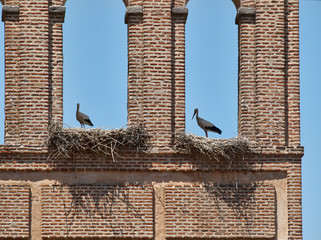 Two storks with nests at top of Avila city wall.