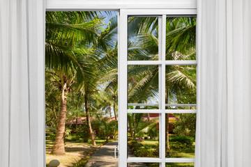 window with view  green  tree sea  bright sunshine