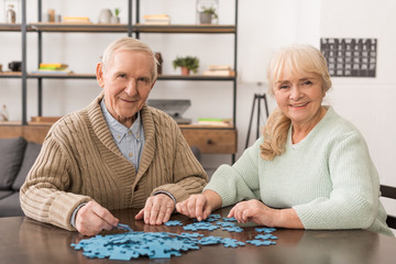 Wall Mural - cheerful senior couple smiling and playing puzzles at home