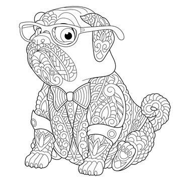 zentangle pug dog coloring page