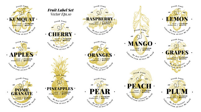 Berry and fruit labels set. Vintage style design. Hand drawn vector illustrations. Set templates price tags for shops and markets of organic vegetarian food. Hand drawn nature objects.