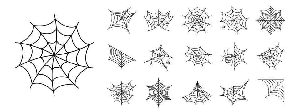 Spider icon set. Outline set of spider vector icons for web design isolated on white background