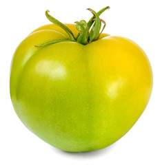 one tomato green isolated