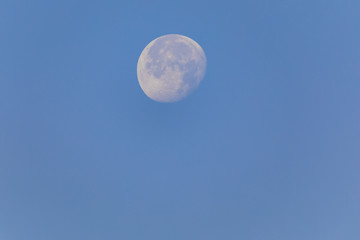 Big waning moon at morning