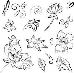 graphic vector drawing flowers leaves and curls on a white background