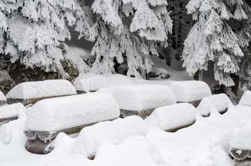 Wooden benches covered with a thick layer of fresh snow
