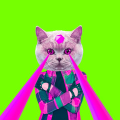 Fashion hipster Cat with lasers from eyes. Animal fun collage art