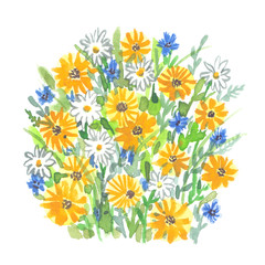 Bunch of wild field flowers painted in watercolor on clean white background