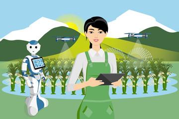 Etiqueta Engomada - Robot farmer and drone are watering rice in a field. Smart farming