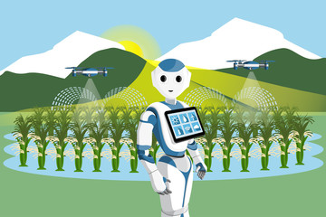 Etiqueta Engomada - Robot and drone are watering rice in a field. Smart farming