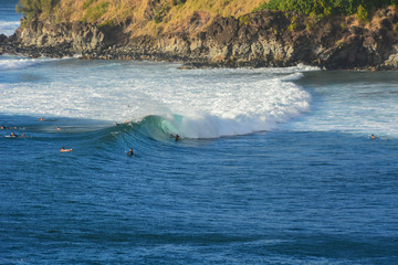 Surfers in Honolua Bay, Maui, Hawaiian Islands