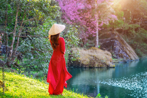 Wall mural Woman wearing Vietnam culture traditional in cherry blossom park.