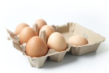chicken eggs in egg box on white background