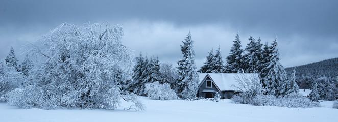 Leśna chata w górach zimą